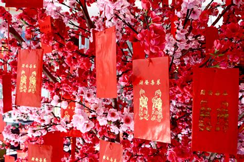 plum blossom tree new year a guide to new year customs and traditions