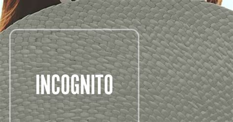 behr incognito paint    bedroom