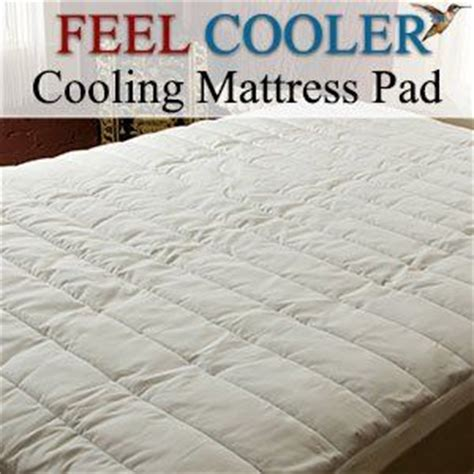 Can I Return A Mattress by 17 Best Images About Mattress Cover On