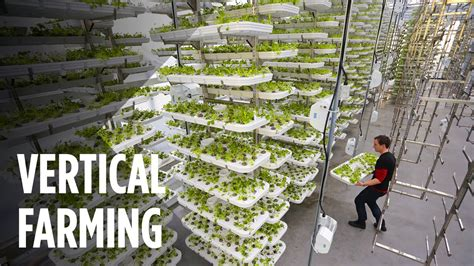 bittersweet brexit the future of food farming land and labour books this farm of the future uses no soil and 95 less water