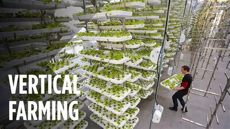 vertical farming works  maximize crop output