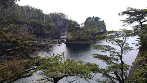 Rugged Bed Cover Cape Flattery Trail Inns Of Excellence