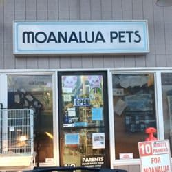 moanalua pets 87 photos 43 reviews pet shops 4510