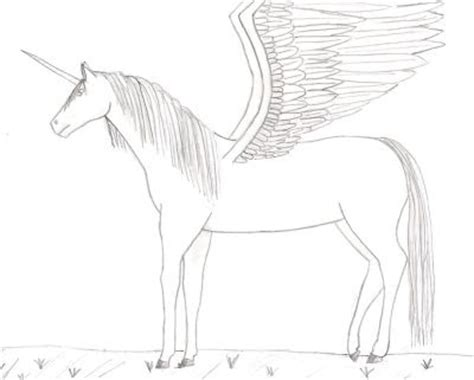 Coloring Page Unicorn With Wings by 6 The Unicorns With Wings Coloring Sheet