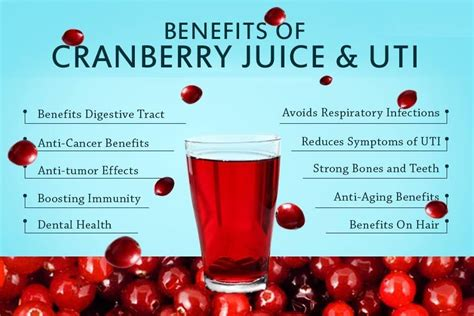 How Much Cranberry Juice Should I Drink To Detox by Gardening