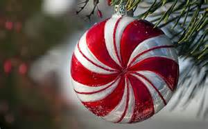 peppermint ornament hanging in pine tree hd wallpapers