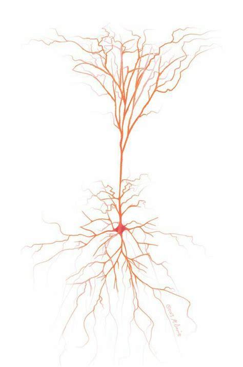 neuron tattoo neuron neuroscience next tat
