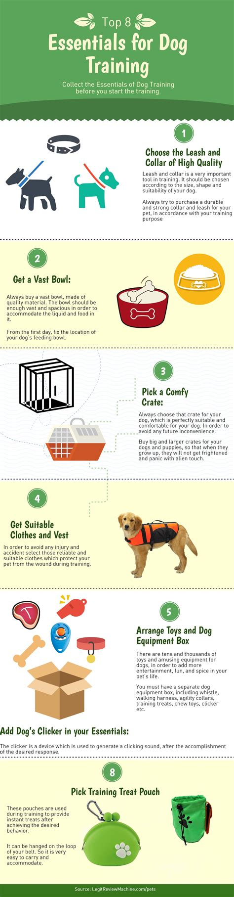 how do guide dogs get trained 8 must essentials for the a comprehensive infographic