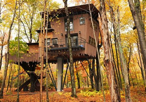 theme hotel connecticut 10 incredible treehouse hotels in the us winvian farm