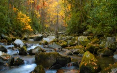 creek pictures hd desktop wallpapers  hd