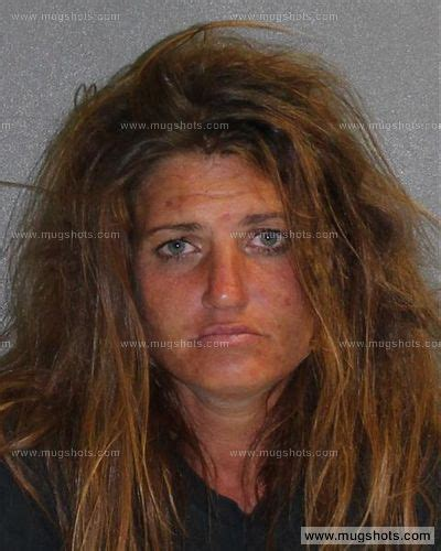 Records Volusia County Florida Cook Mugshot Cook Arrest Volusia County Fl