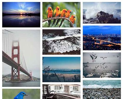best photo gallery for which is the best photo gallery plugin