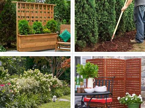 diy backyard privacy screen diy seclusion 4 diy privacy screen upgrades this old house