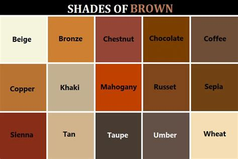 types of browns for hair color different shades of brown hair color chart www imgkid
