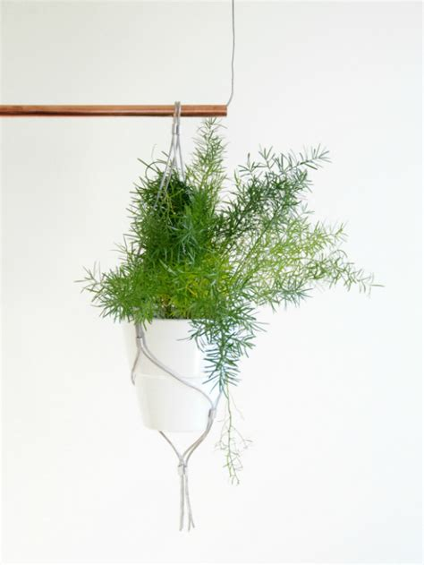 best small hanging plants eclectic trends diy contemporary indoor garden