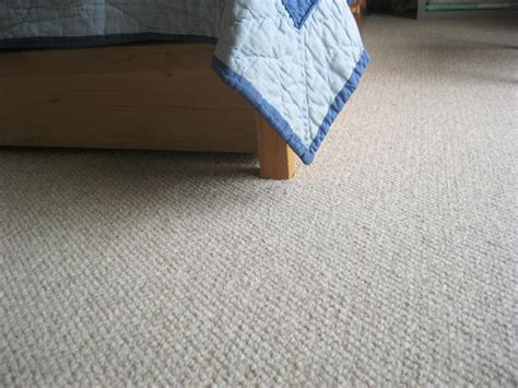 Chemical Free Rugs by Chemical Free Rugs Roselawnlutheran