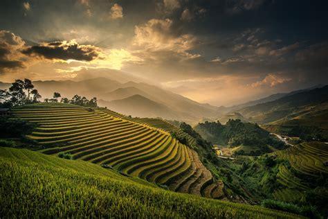 3d Wallpaper 50924881 Terrace Rice Fields Bali best photos rice hd widescreen wallpapers 38