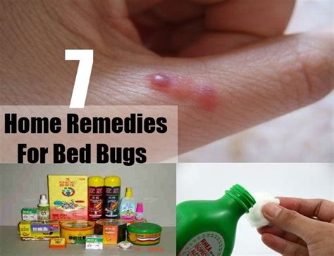 Bed Bug Home Remedy by 7 Home Remedies For Bed Bugs Treatments Cures For Bed Bugs Home Remedies