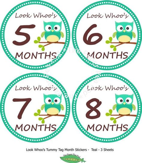 printable iron on logos instant download monthly owl tummy tags diy printable