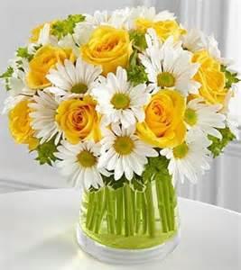 Glass Vase Pebbles Daisy Daisies Daisy Flower Daisy Flowers