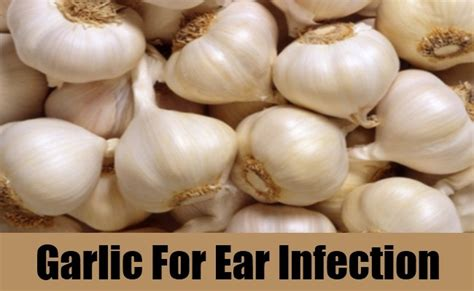 home remedy for ear infection top 8 home remedies for ear infection diy find home remedies