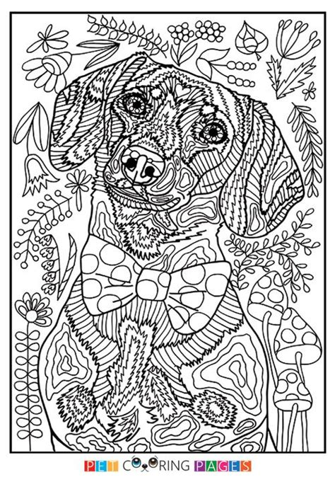 coloring books for adults dogs 431 best images about cats dogs coloring pages for
