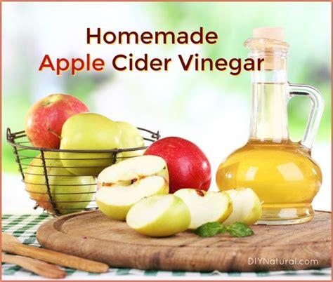 how to make apple cider vinegar how to make apple cider vinegar