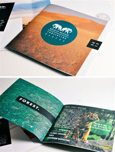 cool top 10 catalog of 50 beautiful printed brochure designs for your inspiration