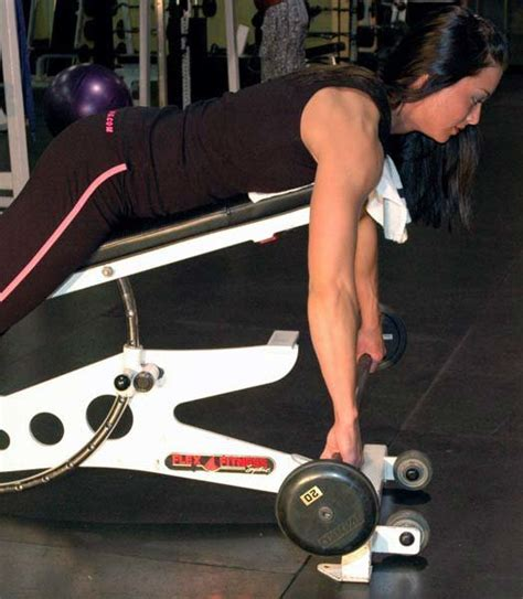incline bench substitute what s an alternative for t bar row bodybuilding com forums