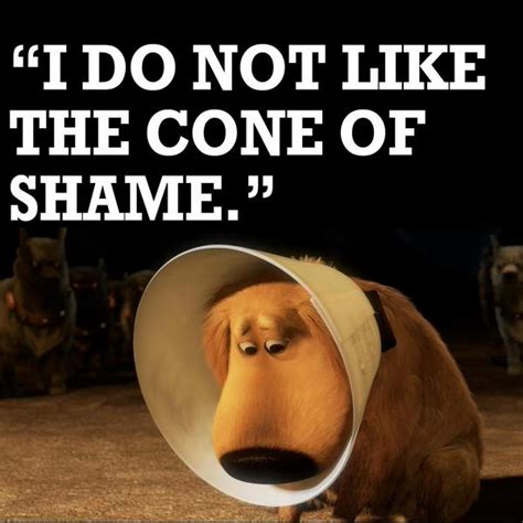 cone of shame disney uk on quot dug and his cone of shame up http t co rc7psxkw quot