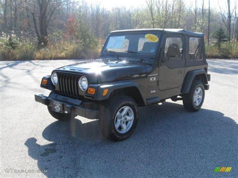 2002 Black Jeep Wrangler 2002 Black Jeep Wrangler X 4x4 39667251 Gtcarlot