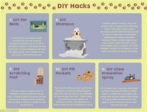 puppy advice the 20 hacks every pet owner needs to from breath to claw marks daily mail