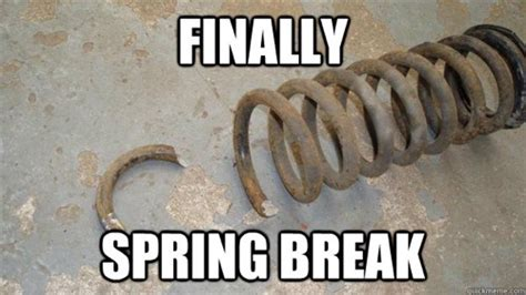 Spring Break Meme - 20 memes about spring break to get the meme party started