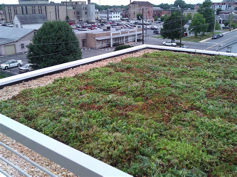 livi apartments green roof e landscape specialty solutions llc planting a live green