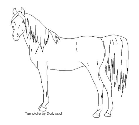 horse templates for photoshop msp horse template three by laurenstate on deviantart