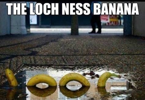 Loch Ness Monster Meme - funny picture 2014