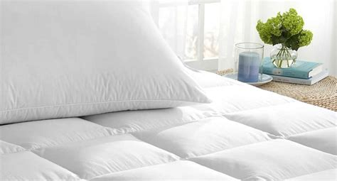 head in a comfortable bed how does plant based memory foam compare to traditional