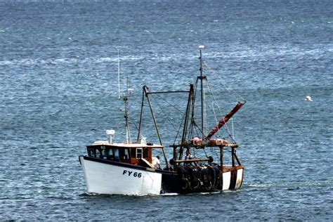 looe bay boat trips welcome to fozimage the photography of ian foster