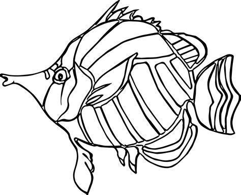fish coloring page pdf ancient angel fish coloring page wecoloringpage
