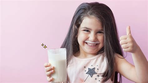 segudang manfaat susu kambing  balita berbagi tips