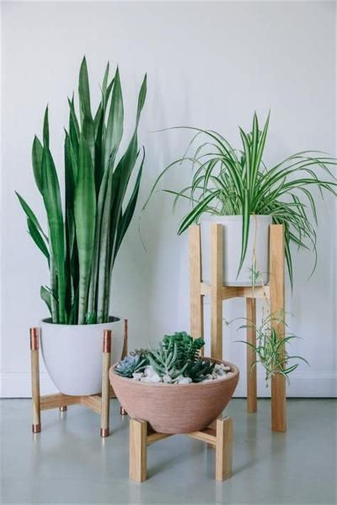 indoor wood planter 25 best ideas about indoor plant stands on