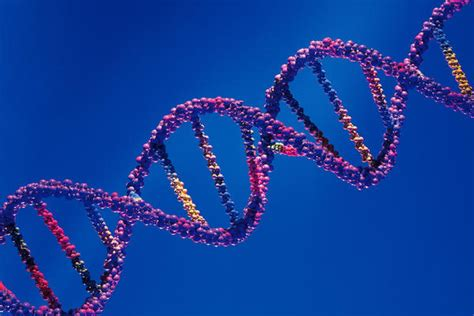 anti hcv test anti hcv riba w band pattern answers on healthtap