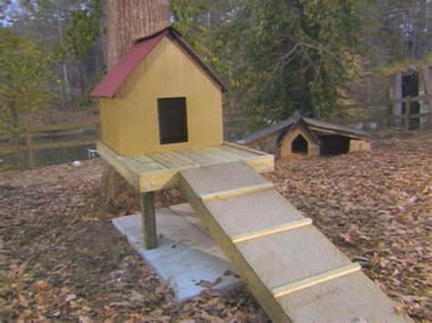 cost to build a dog house how to build a dog treehouse how tos diy