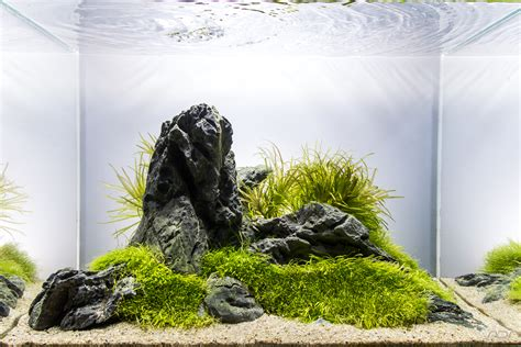aquascape ada aquascape no 4 ada 45p tanks pinterest aquascaping