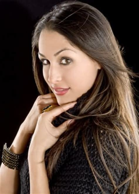 nikki bella information 17 best images about bella twins role models beat wwe