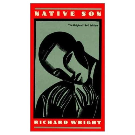 themes in the book native son critiques of american racism in the novels of wright