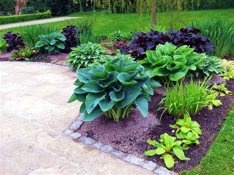 28 best hosta flower beds creative ideas for flower