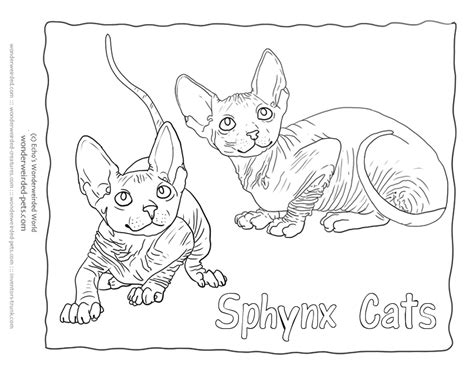 cat breed clipart clipground