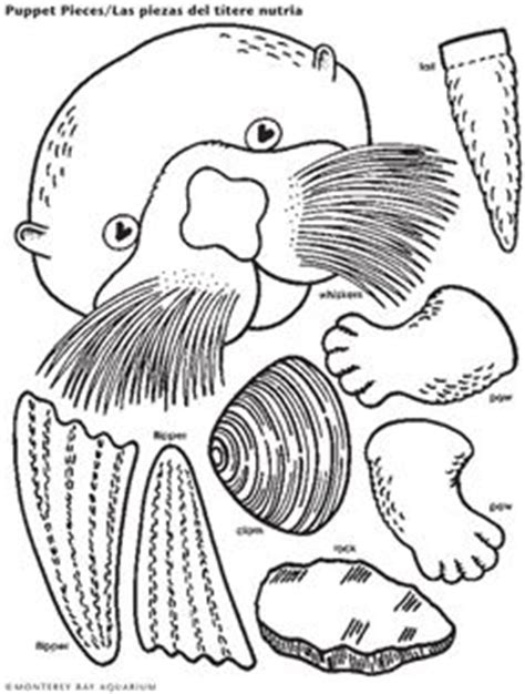 otter coloring pages preschool otter page coloring sheets monterey bay aquarium a