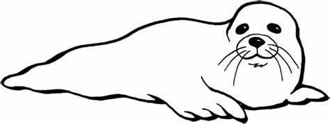 printable seal mask template free coloring pages of seal mask